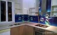 Mutfak arası kırılmaz - yanmaz dijital resim baskılı cam kaplamalar, TRIADOOR